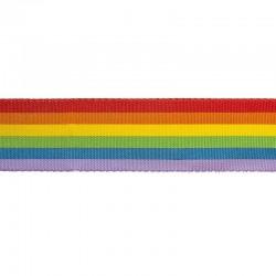 Nastro Multicolor H. 16 mm PACE, GAY PRIDE